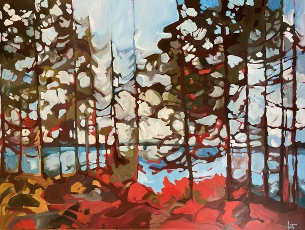 Forest Lights by Holly Ann Friesen