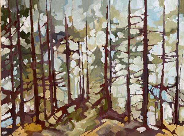 Forest Haze 3 by Holly Ann Friesen