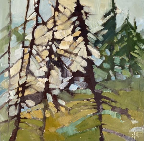 Morning Light 1 by Holly Ann Friesen