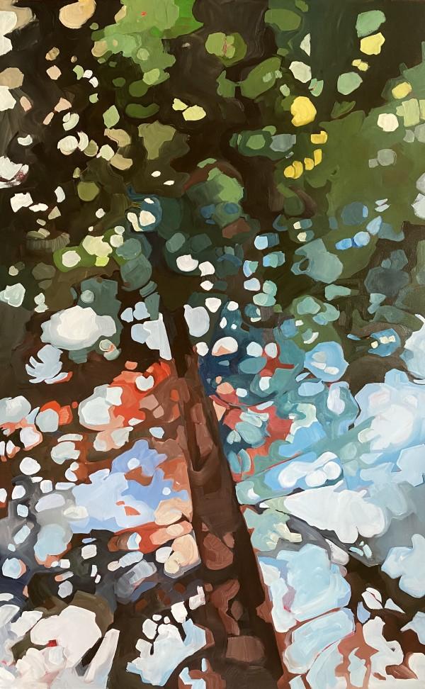 Tall Pine 1 by Holly Ann Friesen