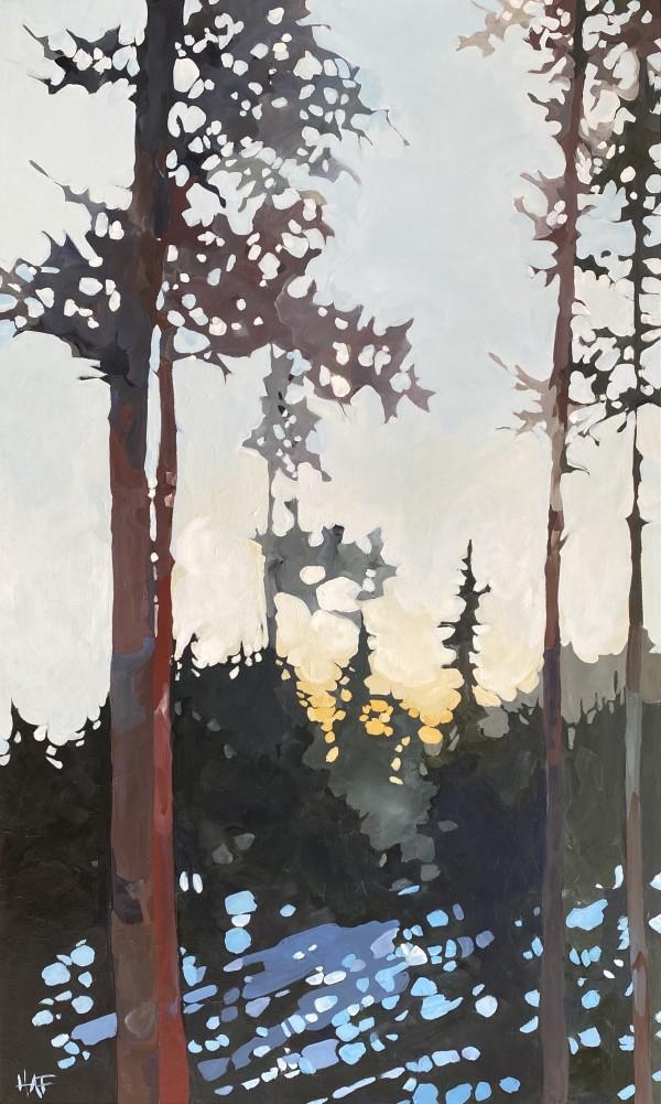 Morning Light by Holly Ann Friesen