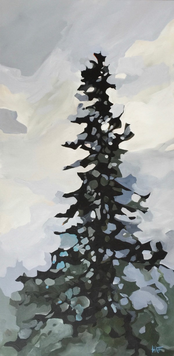 Towering Spruce by Holly Ann Friesen