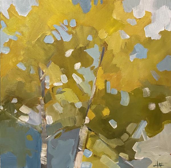 Reaching Birch 1 by Holly Ann Friesen
