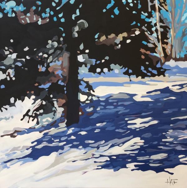 Blue Spruce on Hill by Holly Ann Friesen