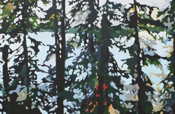Pine Filter 2 by Holly Ann Friesen