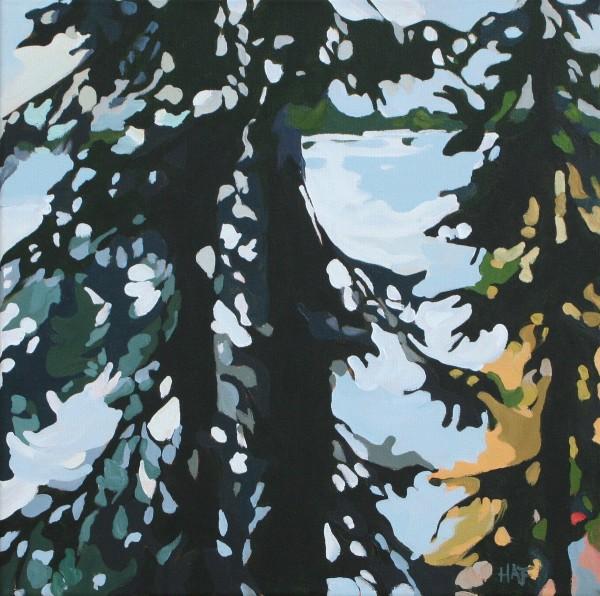 Pine Filter 1 by Holly Ann Friesen