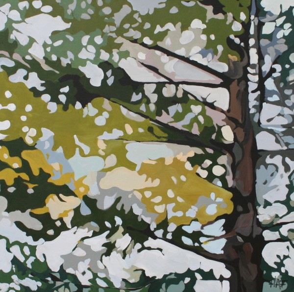 Pine Fall 2 by Holly Ann Friesen