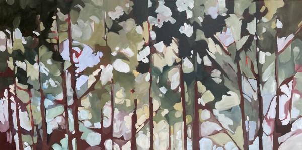 Light Canopy by Holly Ann Friesen