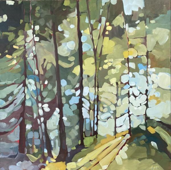 Light on Moss by Holly Ann Friesen
