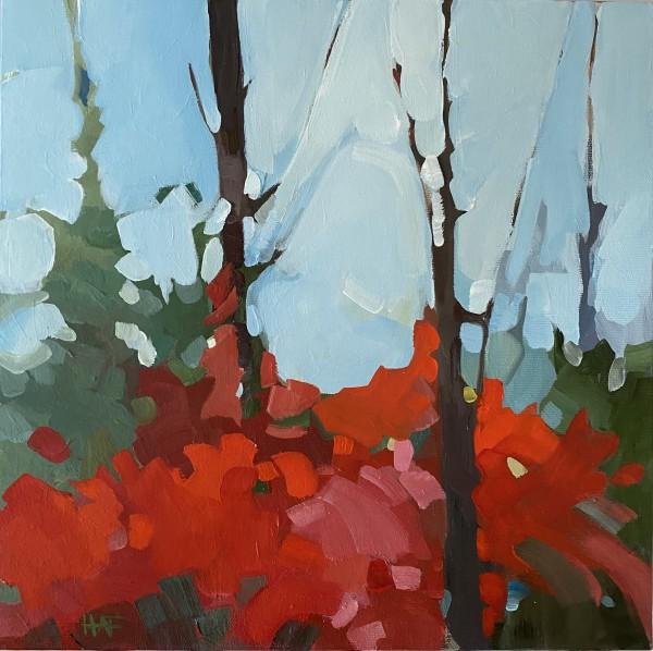 Misty Window by Holly Ann Friesen
