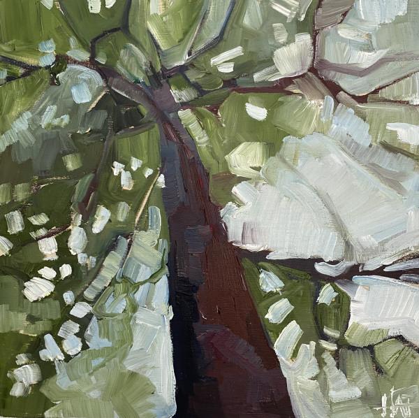 Outlook 1 by Holly Ann Friesen
