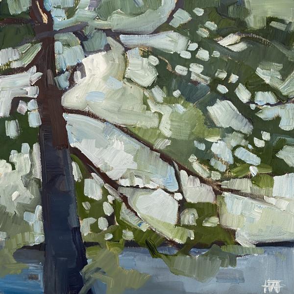 Outlook 2 by Holly Ann Friesen