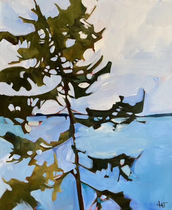 Stormy Pine by Holly Ann Friesen