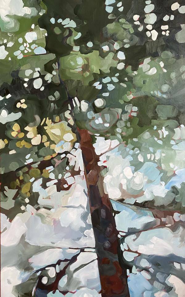 Tall Pine 2 by Holly Ann Friesen