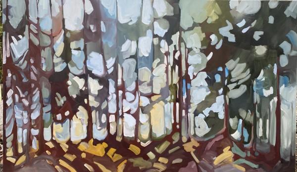 Boreal Path 1 by Holly Ann Friesen