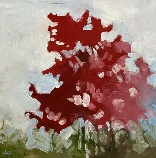 Radiant by Holly Ann Friesen