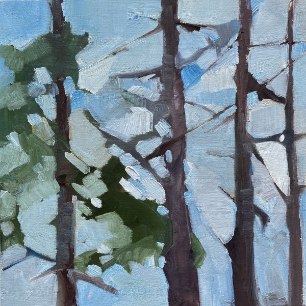 Soft Forest 4 by Holly Ann Friesen