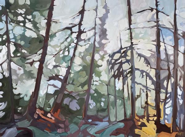 Forest Haze 5 by Holly Ann Friesen