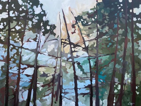 Forest Haze 4 by Holly Ann Friesen