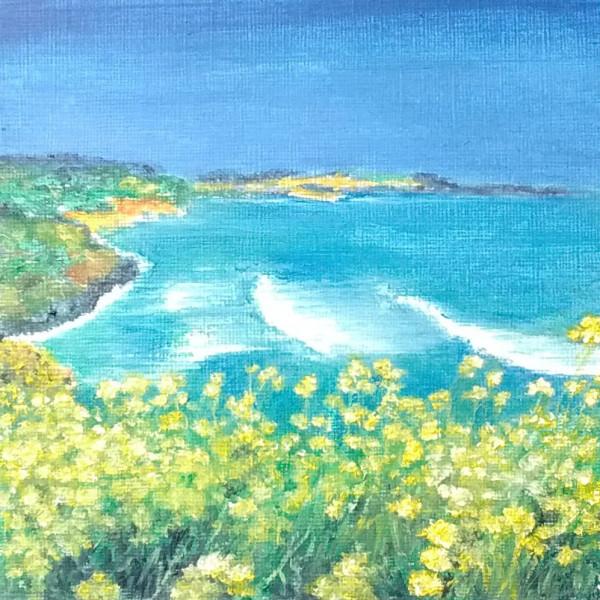 Buttercup Breeze by Jill Cooper