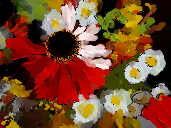 Summer joy! by Donald Hargrove