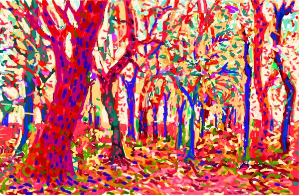 Woodland in pink by Donald Hargrove