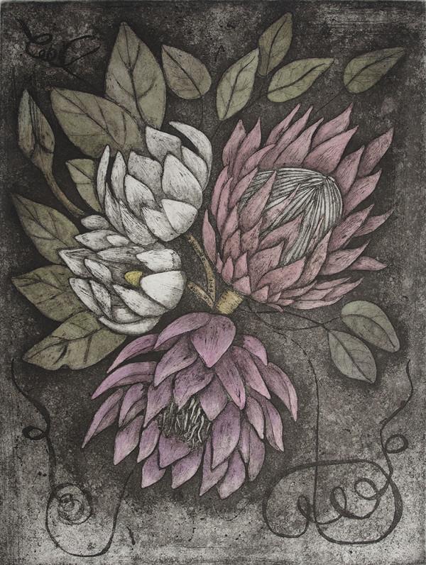 Floribundance Etching by Carolyn Howse