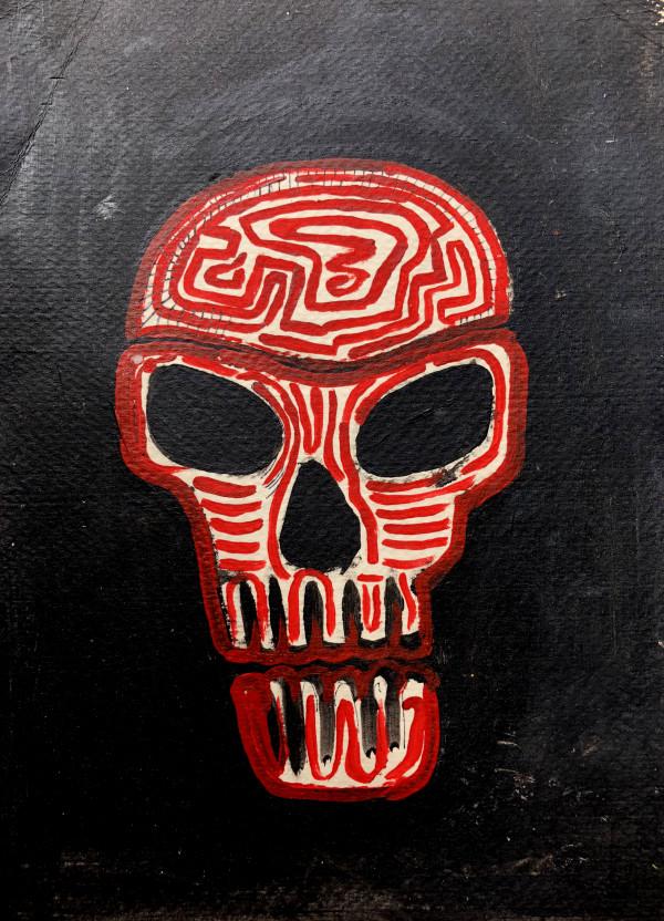 Skull Maze by Lauren Ruch