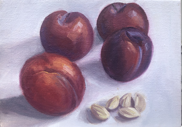Study-Plums by Lauren Ruch