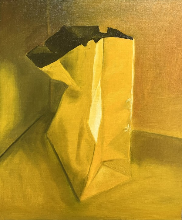 Bagged by Golbou Rad