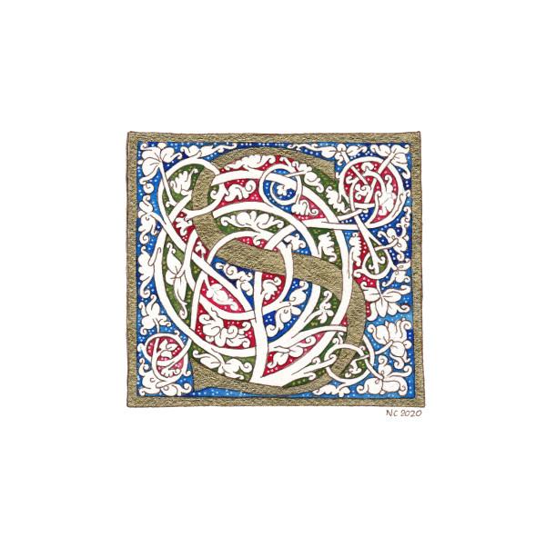 """Initiale """"S"""" vigne blanche (White vine """"S"""" drop cap) by Nancy Cahuzac"""