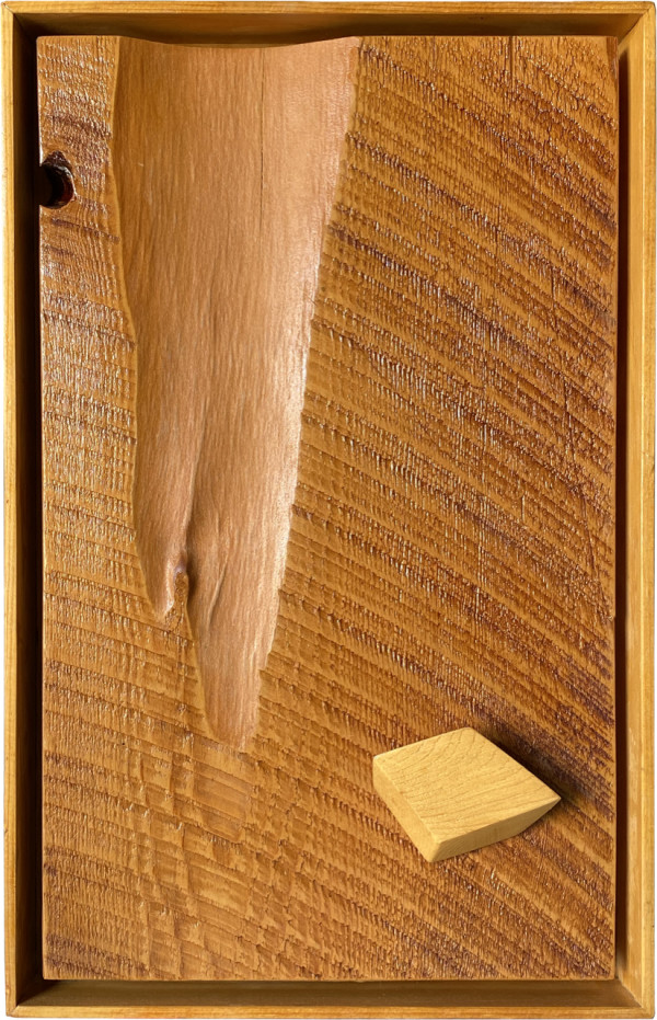 Cedar Slab by Ronald Davis