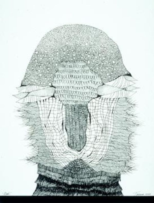 托尼Tascona,O.C.,LLD,RCA的面具