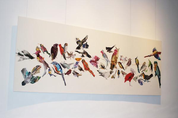 We ate the birds by Nina Fraser