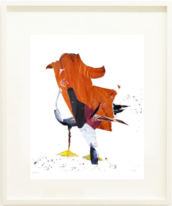 Seagull by Nina Fraser
