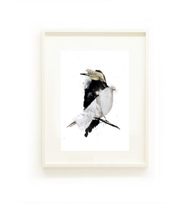 Starling II by Nina Fraser