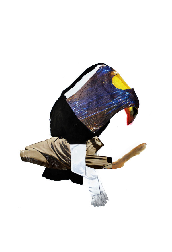 Toucan II by Nina Fraser