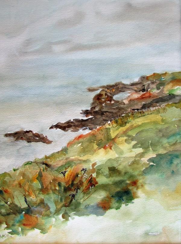 Mendocino Headlands 1 by Ruth McMillin