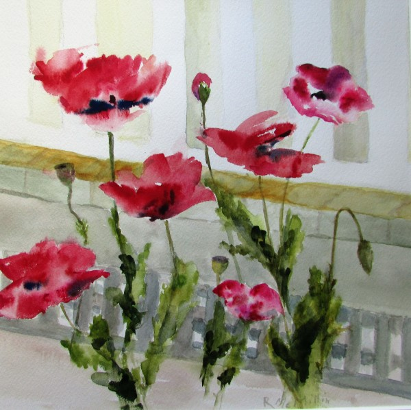 Mar Vista Poppies by Ruth McMillin