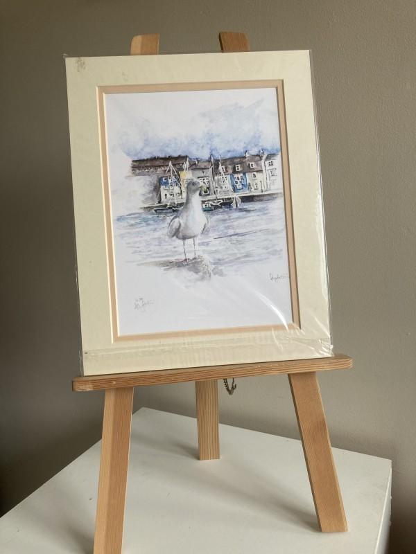 Weymouth Gull (Print) by Ally Tate
