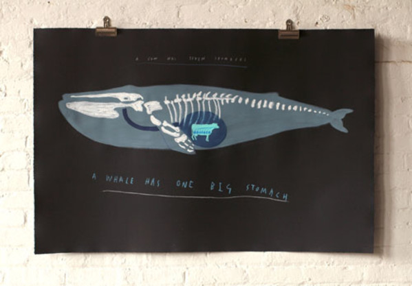 Whale/Cow Diagram by Oliver Jeffers