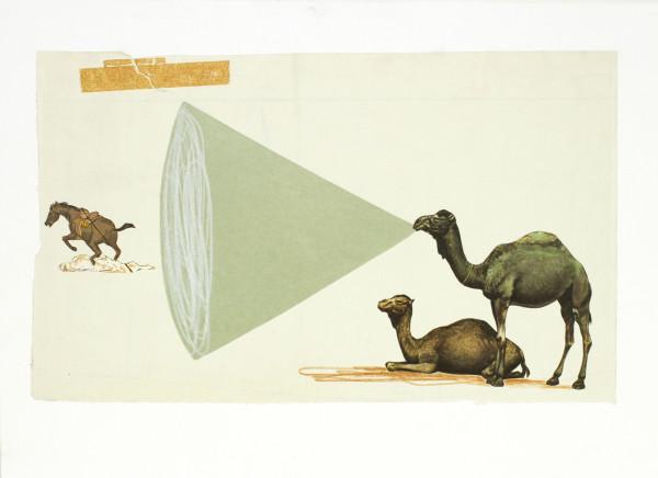 Camel Volume by Oliver Jeffers