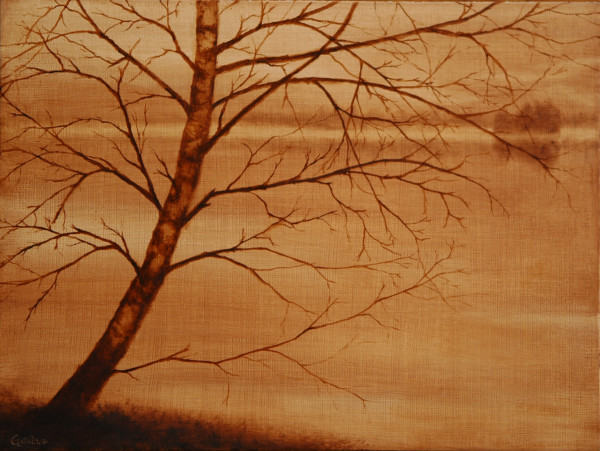 Tree Portrait: Barely There by Christine Gedye