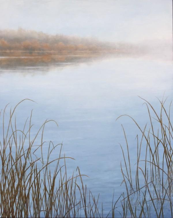 Morning Calm by Christine Gedye