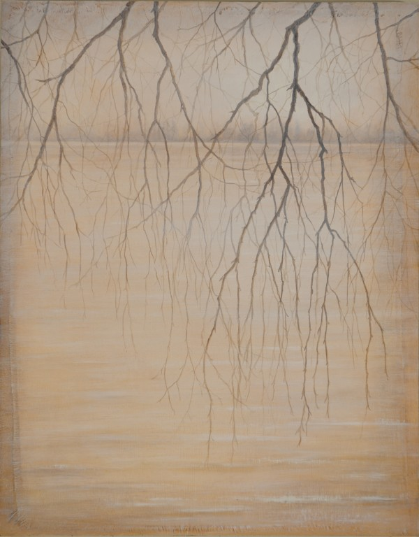 Seeing Through by Christine Gedye