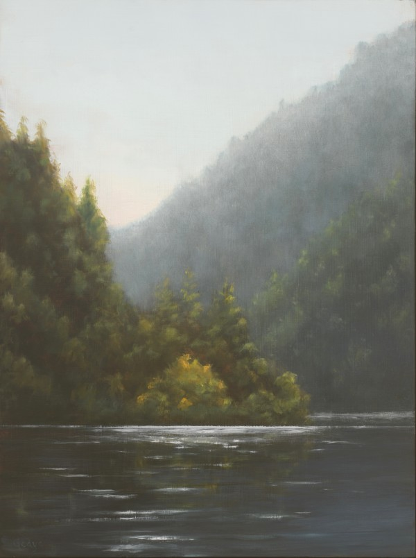 Tranquility (Ross Lake) by Christine Gedye