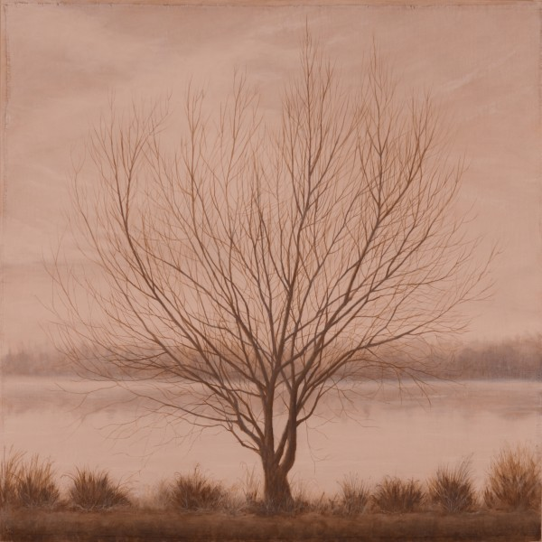 Winter's Grace by Christine Gedye
