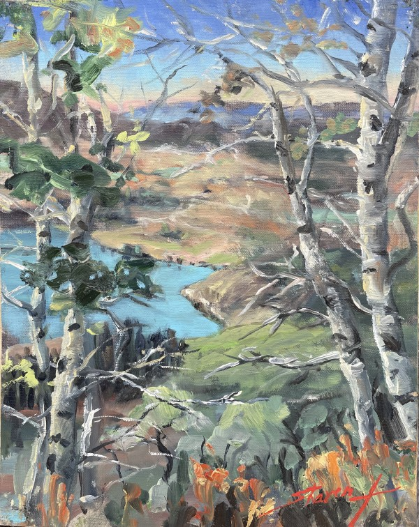 Plein Colorado View by Sharon Rusch Shaver