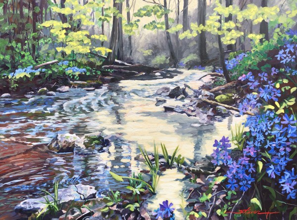 Phlox in the Hollow by Sharon Rusch Shaver