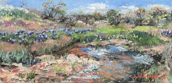 Plein Texas Glory by Sharon Rusch Shaver